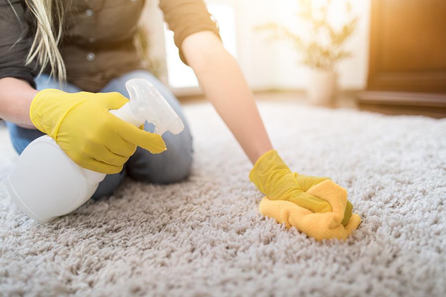 Brisbane Carpet Stain Removal