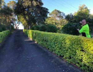 Brisbane Landscaping