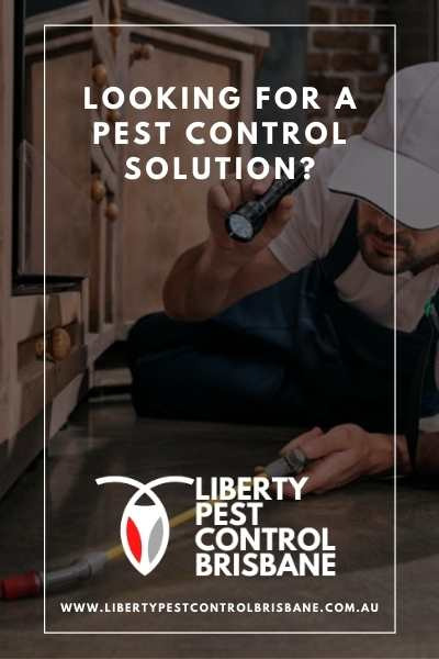 Liberty Pest Control Brisbane