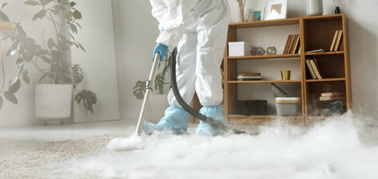 carpet cleaning wilston