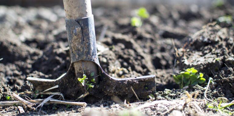 how to lay turf brisbane