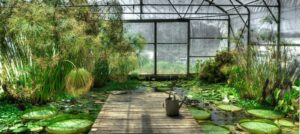 interior landscaping brisbane