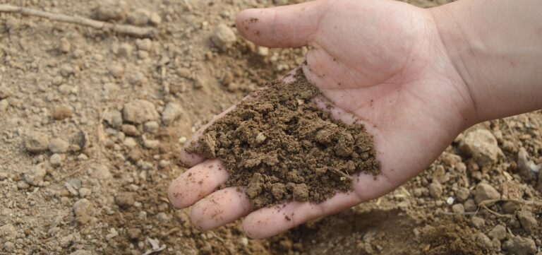 turf preparation brisbane